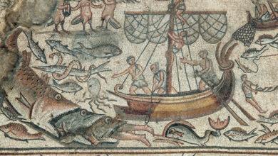 Photo of Jonás no fue tragado por «una ballena»