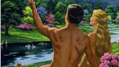 Photo of ¿No habéis leído que el Creador, en el principio, los creó hombre y mujer?