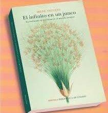 Photo of Un libro