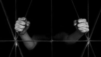 Photo of Francisco: no hay cultura ni belleza si se explota el trabajo esclavo