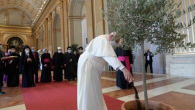 Photo of 10 años para salvar la tierra: Los científicos, unidos al Papa
