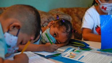 Photo of Colapso en la  estructura educativa: ¿incapacidad o pretensión gubernamental?