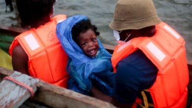 Photo of ¡No es el Libro de la Selva!, es la realidad de muchos niños migrantes