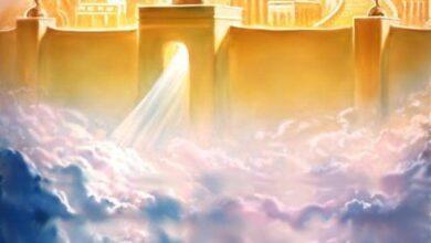 Photo of «El reino de Dios ha llegado a vosotros»